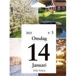 Almanacka Väggplån Dagblock 1Dag/Sida