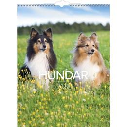Väggkalender Hundar